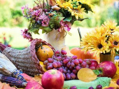 Tutti gli alimenti che rafforzano il sistema immunitario in autunno