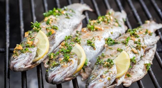 Come mangiare pesce secondo galateo