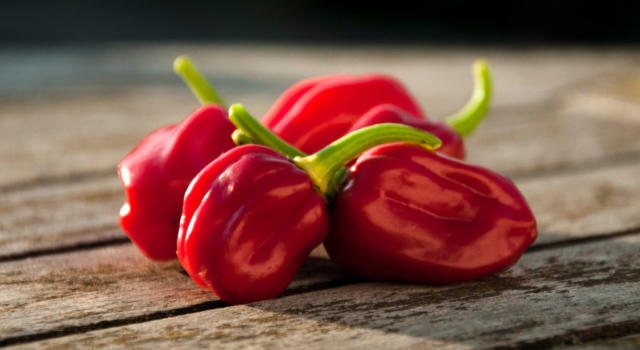 Benefici e proprietà peperoncino habanero
