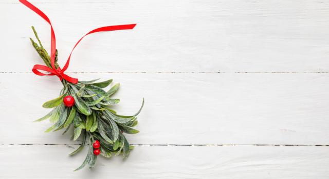 Decorazioni Natale con vischio