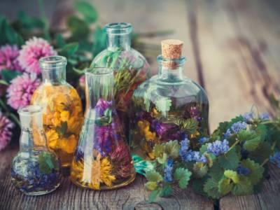 Estrarre essenze dai fiori: come farlo in maniera fai da te
