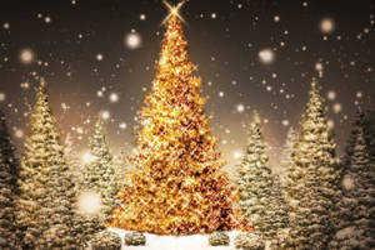 come posizionare luci su albero di Natale