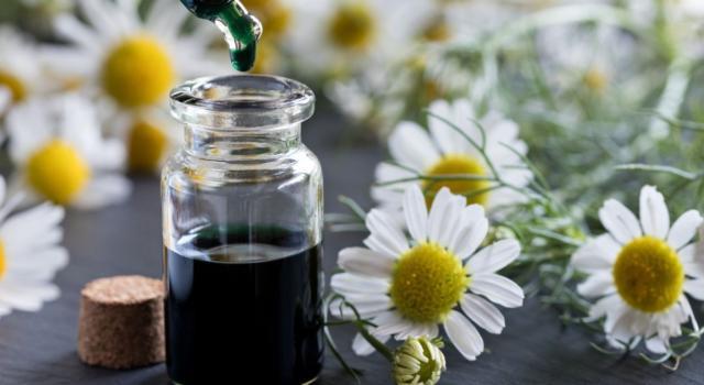 Come usare olio essenziale di camomilla blu