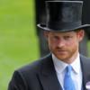 """Duchi di Sussex, da Buckingham Palace tuonano: """"Sospendiamo i titoli reali"""""""