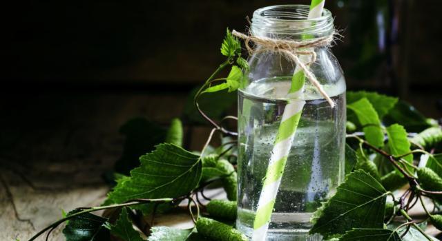 Quali sono benefici acqua di betulla