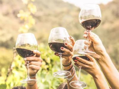 È vero che il vino fa ingrassare? Ecco cosa dovete sapere