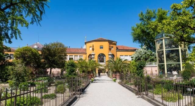 Siti Unesco in Italia: l'orto botanico di Padova