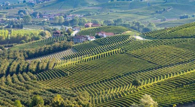 Dove si trovano i Siti Unesco vitivinicoli del Piemonte