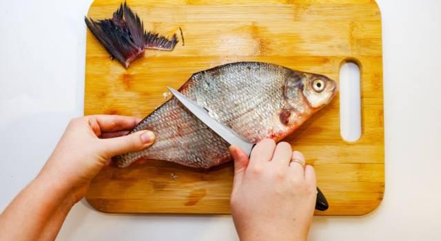 Eliminare odore di pesce