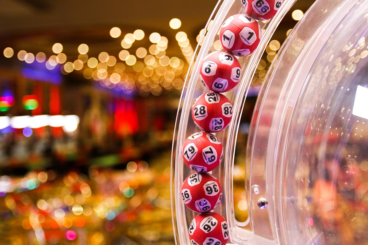 Bingo Lotteria
