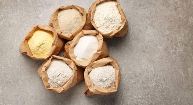 Farina gluten free: tutti i vantaggi di una dieta sana e leggera