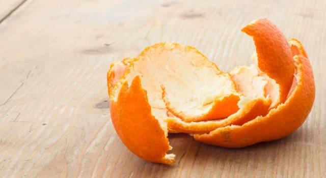 Le bucce di arancia e mandarino si possono riutilizzare: ecco come…