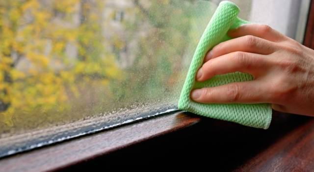 Come eliminare la condensa (e la muffa) in casa in modo naturale