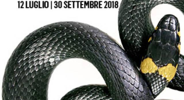Luxus. Lo stupore della bellezza: a Milano la mostra sulla storia del lusso