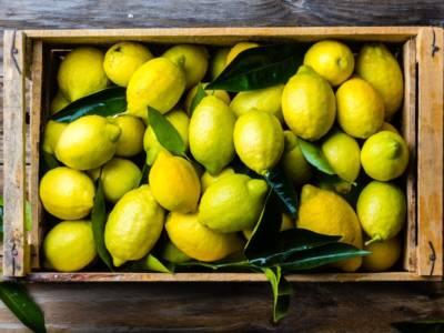 Bollire i limoni? Ecco la bevanda più benefica di tutte!