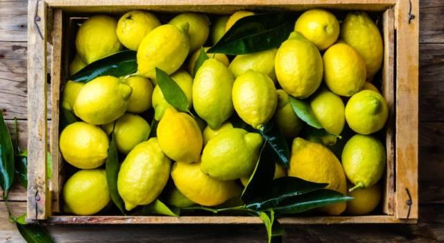 Rimettersi in forma, depurarsi e disintossicarsi? Ecco la dieta del limone!