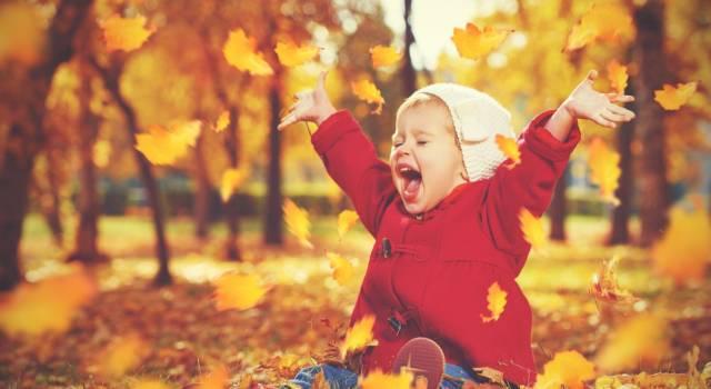 Lavoretti con le foglie d'autunno: ecco come addobbare la casa!