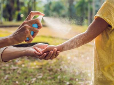 Antizanzare naturale: è possibile farlo in casa?