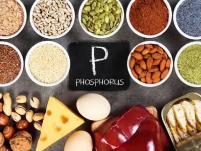 Aumentare la memoria con l'alimentazione: ecco i cibi più ricchi di fosforo