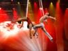 circo elastico acrobazie