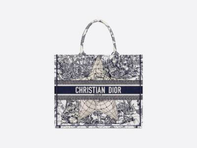 Impossibile resistere alla Book Tote Bag di Dior: come nasce e dove acquistarla