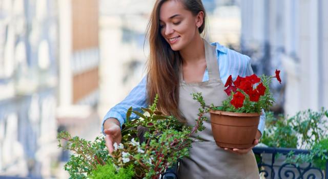 Quali piante da esterno resistono al meglio in ogni stagione?