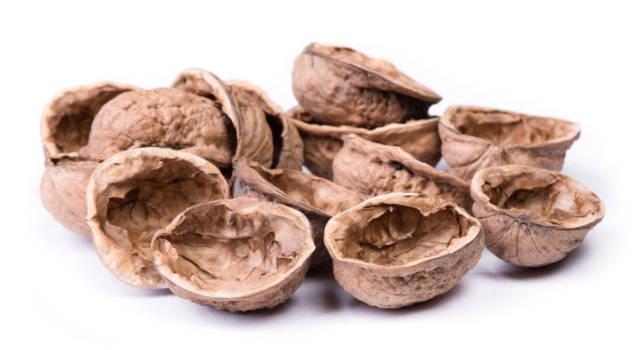 Dove si buttano i gusci delle noci: ecco cosa c'è da sapere