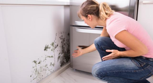 Muffa in casa: i rimedi naturali per sconfiggerla