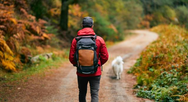 Migliori zaini da montagna: quali sono quelli più indicati per il trekking