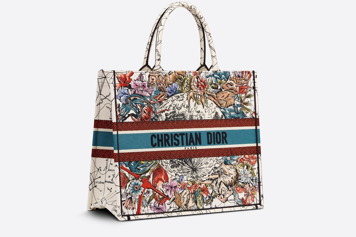Dior Tote book bag