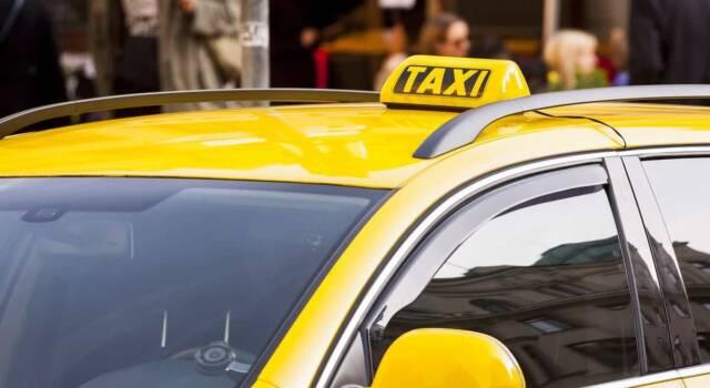Coronavirus: a causa della crisi economica i taxi diventano orti urbani