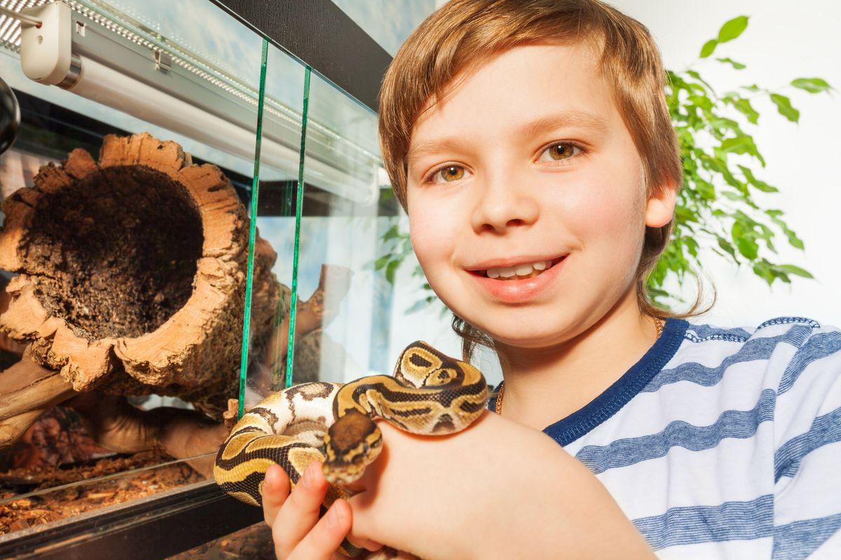 bambino con serpente