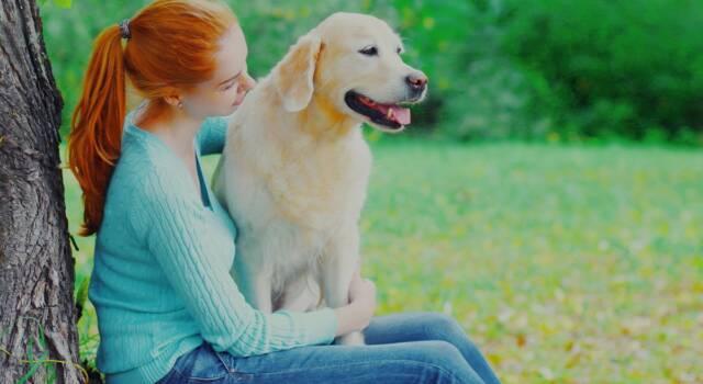 Cani da compagnia, qual è il migliore: come scegliere la razza giusta