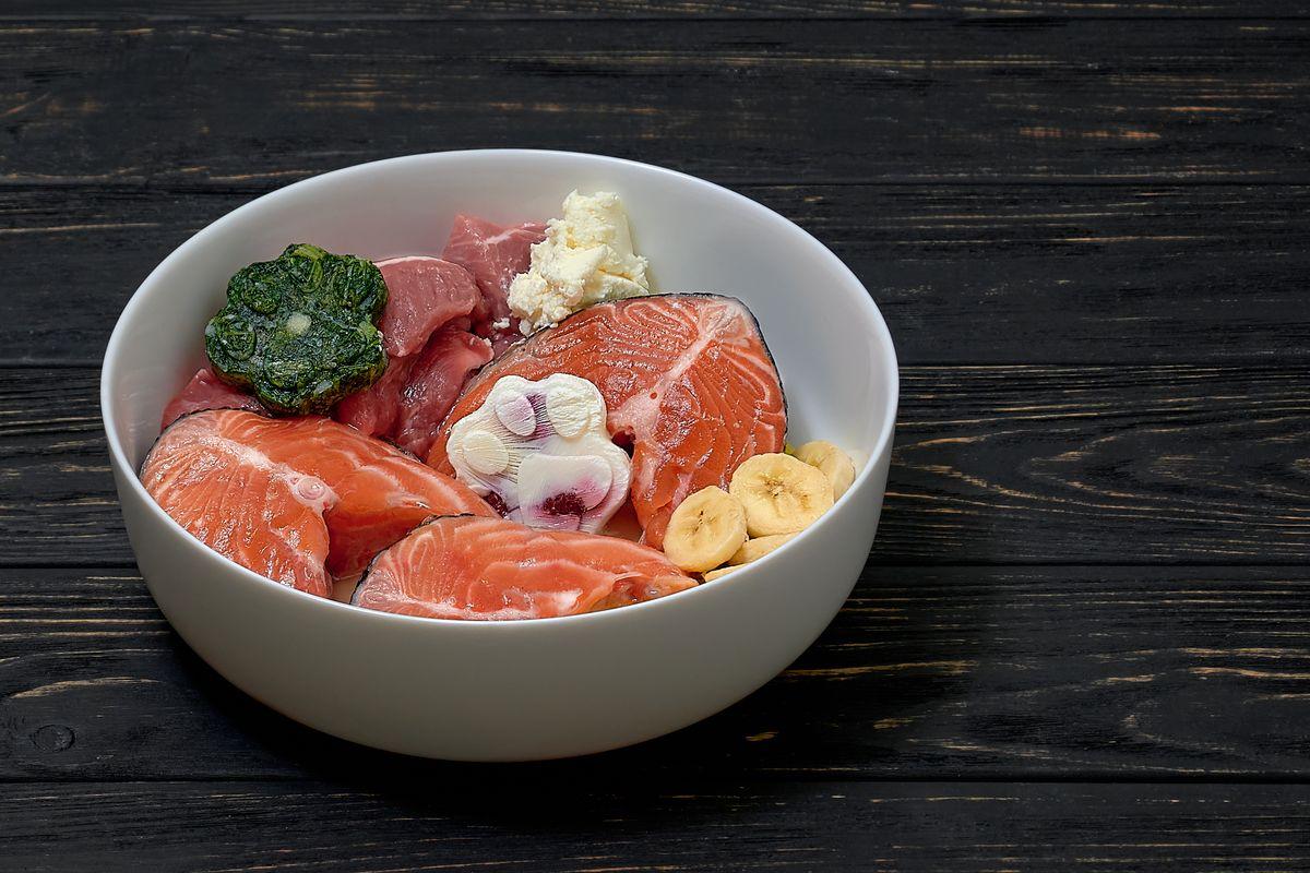 cibo salmone baba pesce
